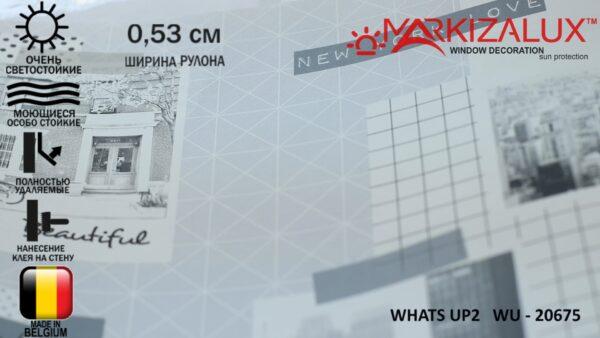 Обои What's up 2 WU - 20675